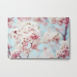 Pink Lush Blossoms | Nature photography, spring flowers Metal Print