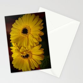 Yellow African Daisy at Barthel's Farm Market Stationery Cards