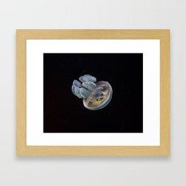 Blue Blubber Jellyfish Framed Art Print