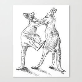 Boxing Roos Canvas Print
