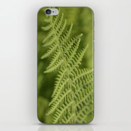 Jane's Garden - Fern Fronds iPhone Skin