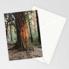 Boulder woods Stationery Cards