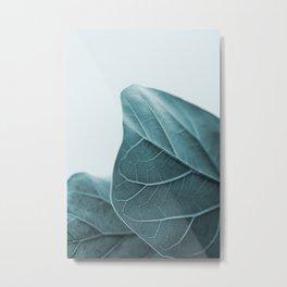 Teal Plant Leaves Metal Print