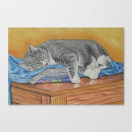Cat Had a Rough Day Canvas Print