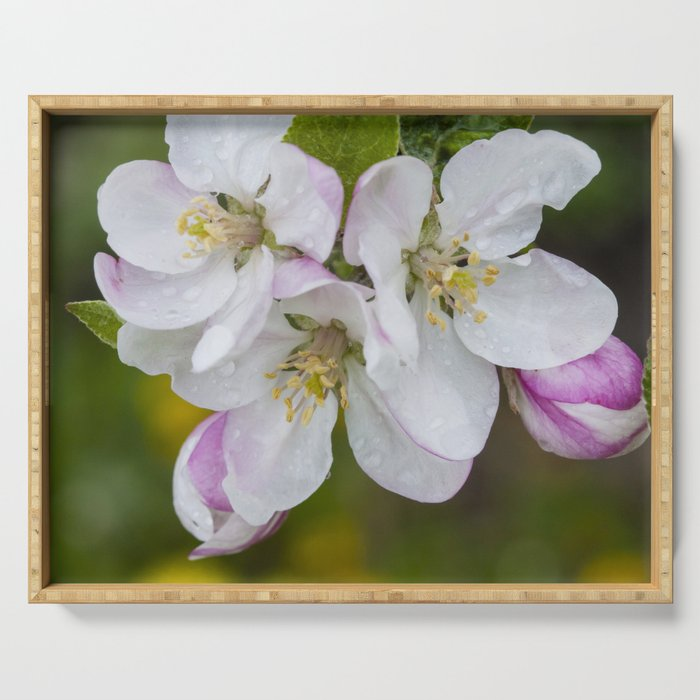 Apple Blossoms Serving Tray