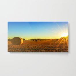 Early morning on the stubble Metal Print