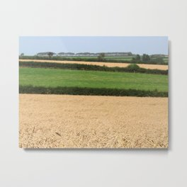 Fields of Devon I Metal Print