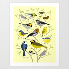 New World Warblers 2 Art Print