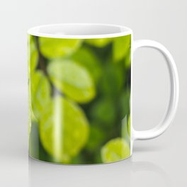 Plant Patterns - Green Scene Coffee Mug