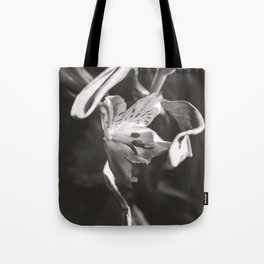 Ribbons of Light Tote Bag