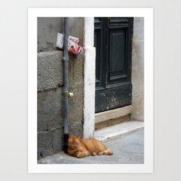 Orange Cat Sleeping, Venice, Italy Art Print