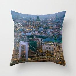 Evening view Throw Pillow
