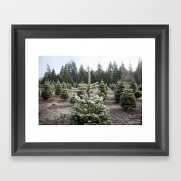 Christmas Tree Farm Framed Art Print