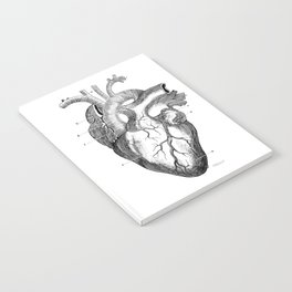 Anatomic hearth engraving Notebook