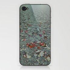 Kyoto iPhone & iPod Skin