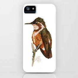 White-bellied Woodstar iPhone Case