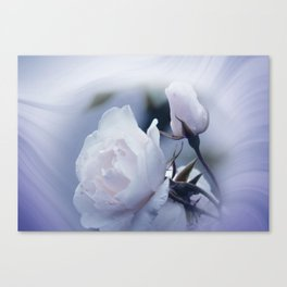 dreaming of lost times Canvas Print