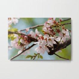Bloom Bloom Bloom Metal Print