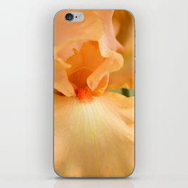 Bearded Iris Orange Harvest iPhone Skin