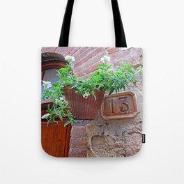 13 - Planter Door Tote Bag