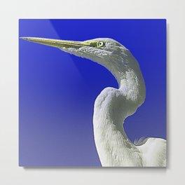 Regal White Egret On Blue Background Metal Print