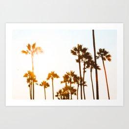 Venice Palms Art Print