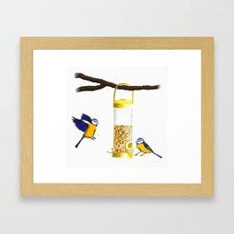 Blue Tit Birds Framed Art Print