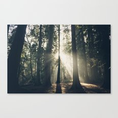 Sun Beam Canvas Print