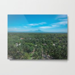 The Palm Jungle Metal Print
