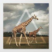 giraffes Canvas Prints featuring Giraffes by Niklas Rosenkilde