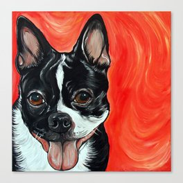 Boston Terrier Dog Art Canvas Print