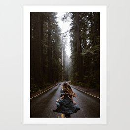 Redwoods National Park Road Art Print