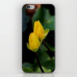 D. o.f. iPhone Skin