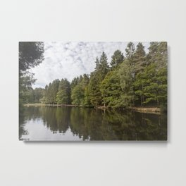Summer Reflections - 3 Metal Print