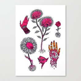 pink misc flashart Canvas Print