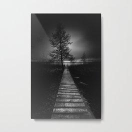 On the wrong side of the lake 9 Metal Print