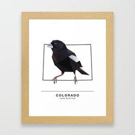 Colorado – Lark Bunting Framed Art Print