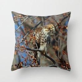Rough Legged Hawk Throw Pillow
