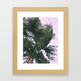 Lenape Park Framed Art Print