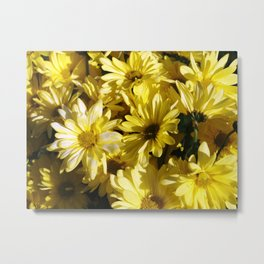 Daisy Does It Metal Print
