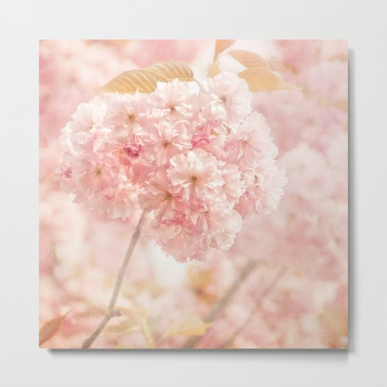JAPANESE CHERRY BLOSSOMS Metal Print