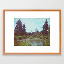 Campbell Creek 1 Framed Art Print