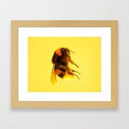 Bugged #31 Framed Art Print