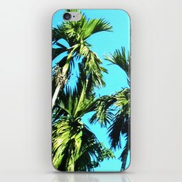Beetle Nut Tree iPhone Skin