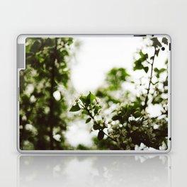 Springtime Snowflakes Laptop & iPad Skin