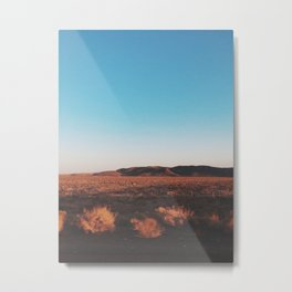 Desert Tranquility Metal Print
