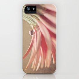 Pixie Hat iPhone Case