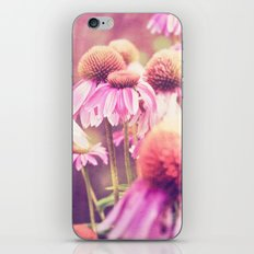 Midsummer Night's Dream - color version iPhone & iPod Skin