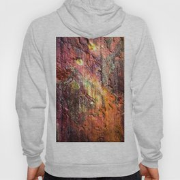 Colorful Nature : Texture Warm Tones Hoody