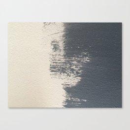Blue shade Canvas Print